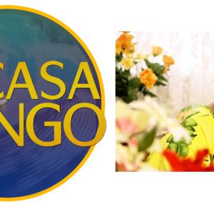 Casa do Jongo reabrirá com roda de samba em homenagem à Dono Ivone Lara