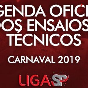 Ensaios Técnicos: Confira as datas dos ensaios técnicos em São Paulo