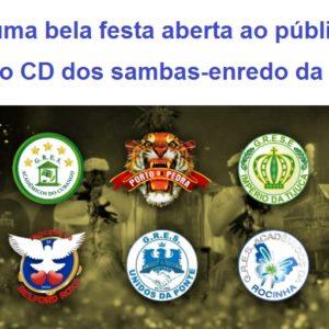 Lierj faz uma bela festa aberta ao público para o lançamento CD dos sambas-enredo da Série A na quadra da Portela