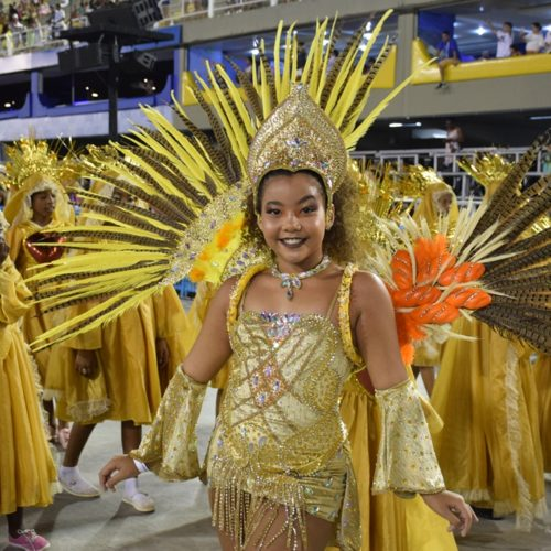 16_desfiledasescolasmirins_tijuquinhadoborel_ compactada_porjorjebezerra_25fev2020 (19)