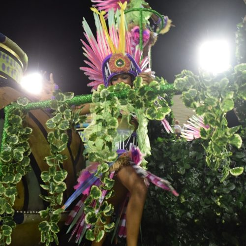 6_desfiledasescolasmirins_mangueiradoamanha_ compactada_porjorjebezerra_25fev2020 (7)