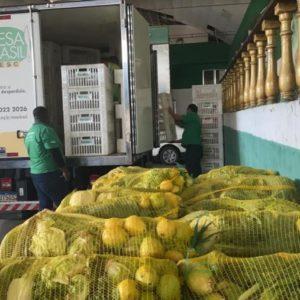 SOLIDARIEDADE: Movimento de sambistas do Rio recebe doação de 1,5 toneladas de alimentos